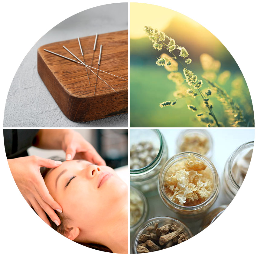Solaris acupuncture and healing arts
